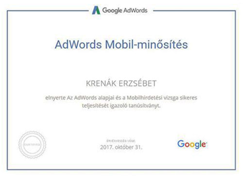 Google AdWords Mobilminősítés - Online Marketing