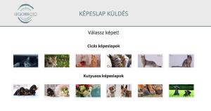 kepeslap-kuldo-alkalmazas-weboldalkeszites